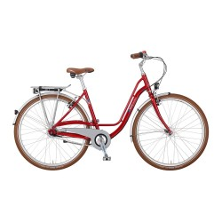 VSF Fahrradmanufaktur S-80